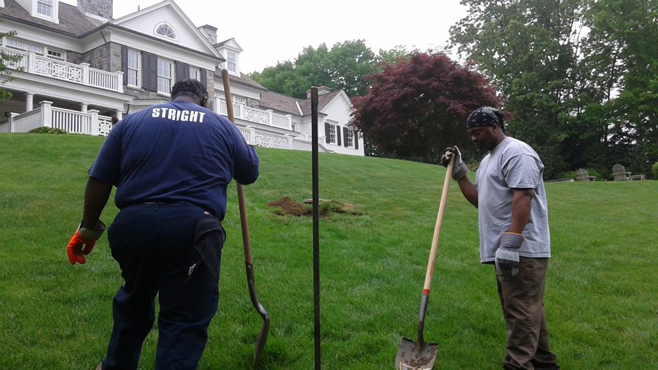 Septic tank back up stright company stright sewage for Sewage backing up into house