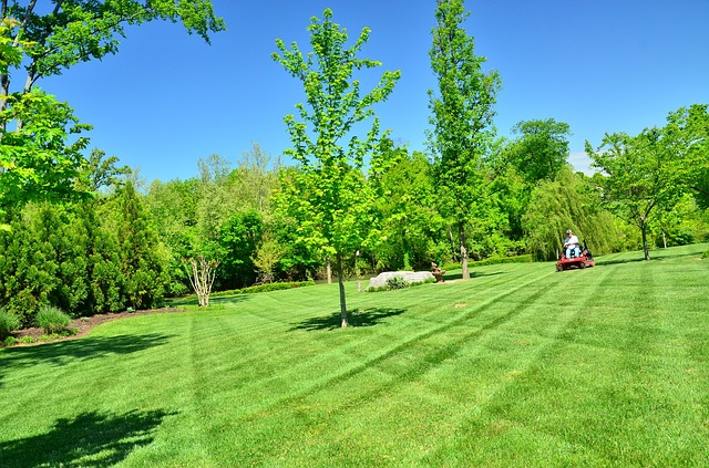 Green Grass Lawn Care Nebraska : Look at all of the lawn care services they offer visit them
