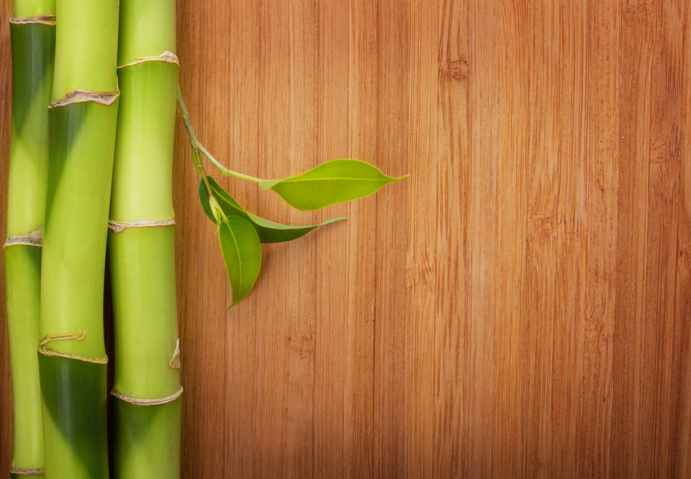 Customers Concerned About The Environment Will Be Happy To Know That Bamboo Floors Are Eco Friendly Is A Grass As Opposed Wood
