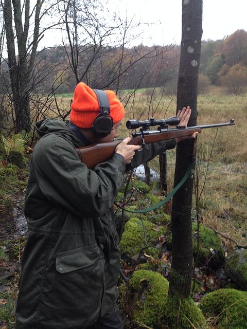 gun scope