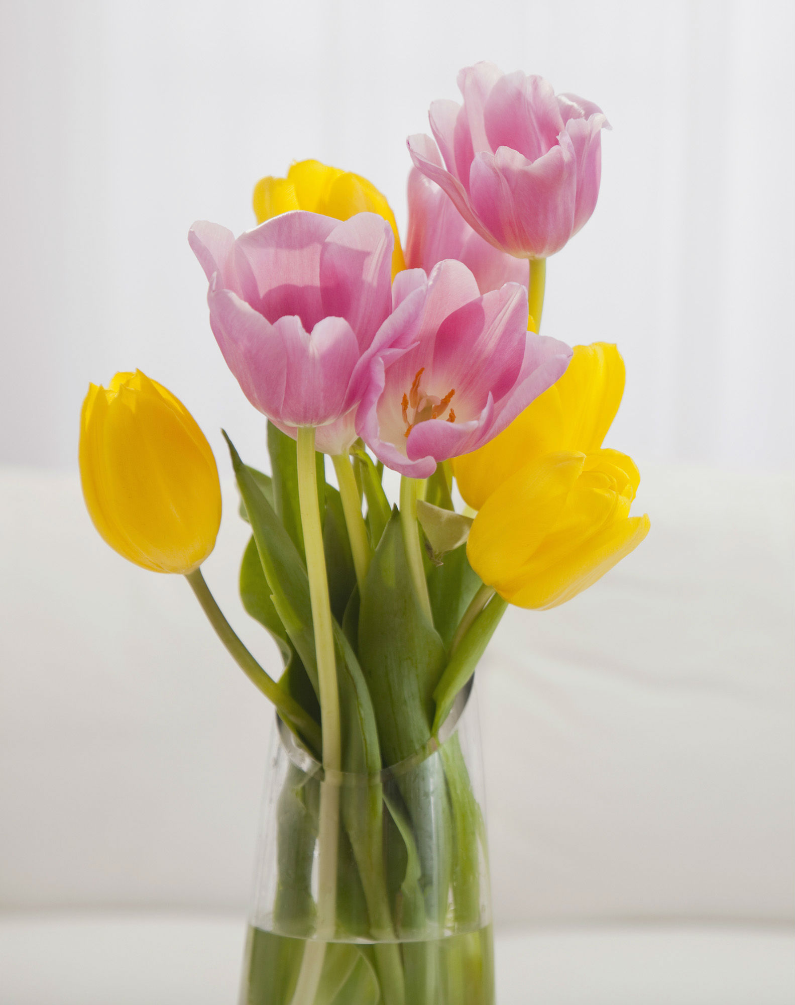 Avoid Extra Fees & Shop Local for Flower Delivery CitiFloral Inc Man
