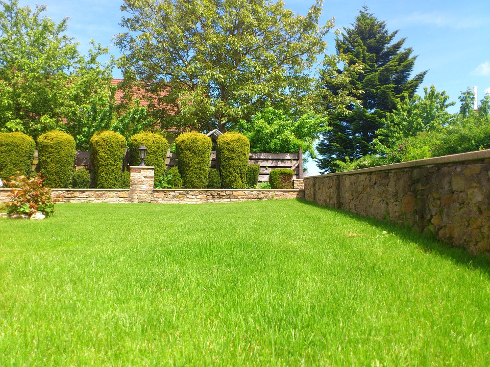 treat your yard to the best lawn service in augusta county ideal