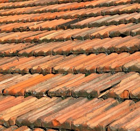 Image Result For Image Result For Replace Roof Shingles