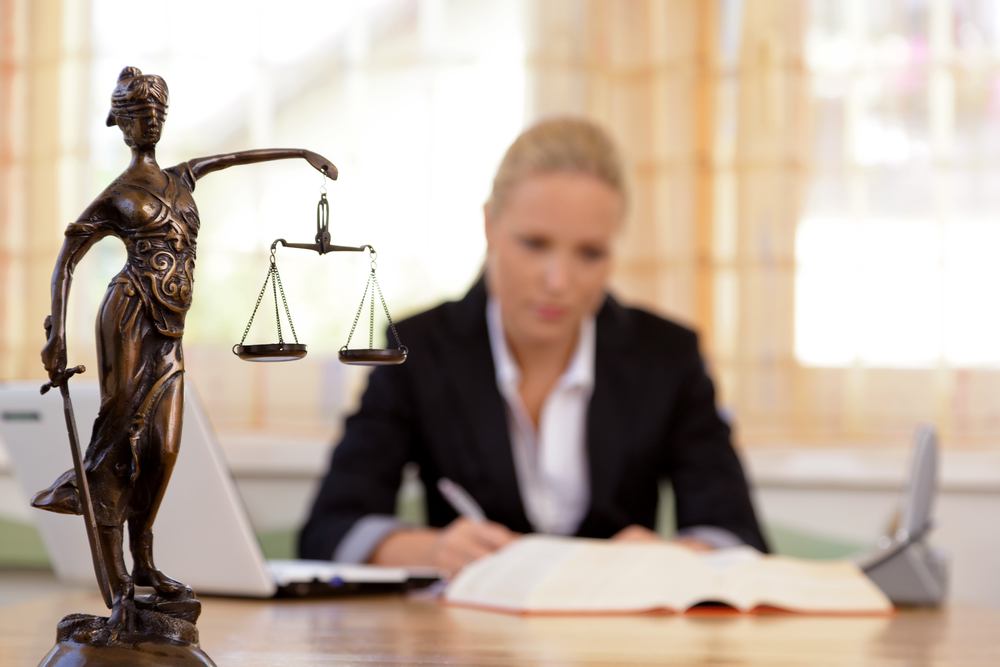 termite lawyer