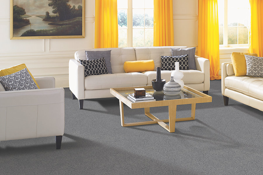 Smartstrand forever clean the world 39 s toughest carpet is for Interior designs holmen