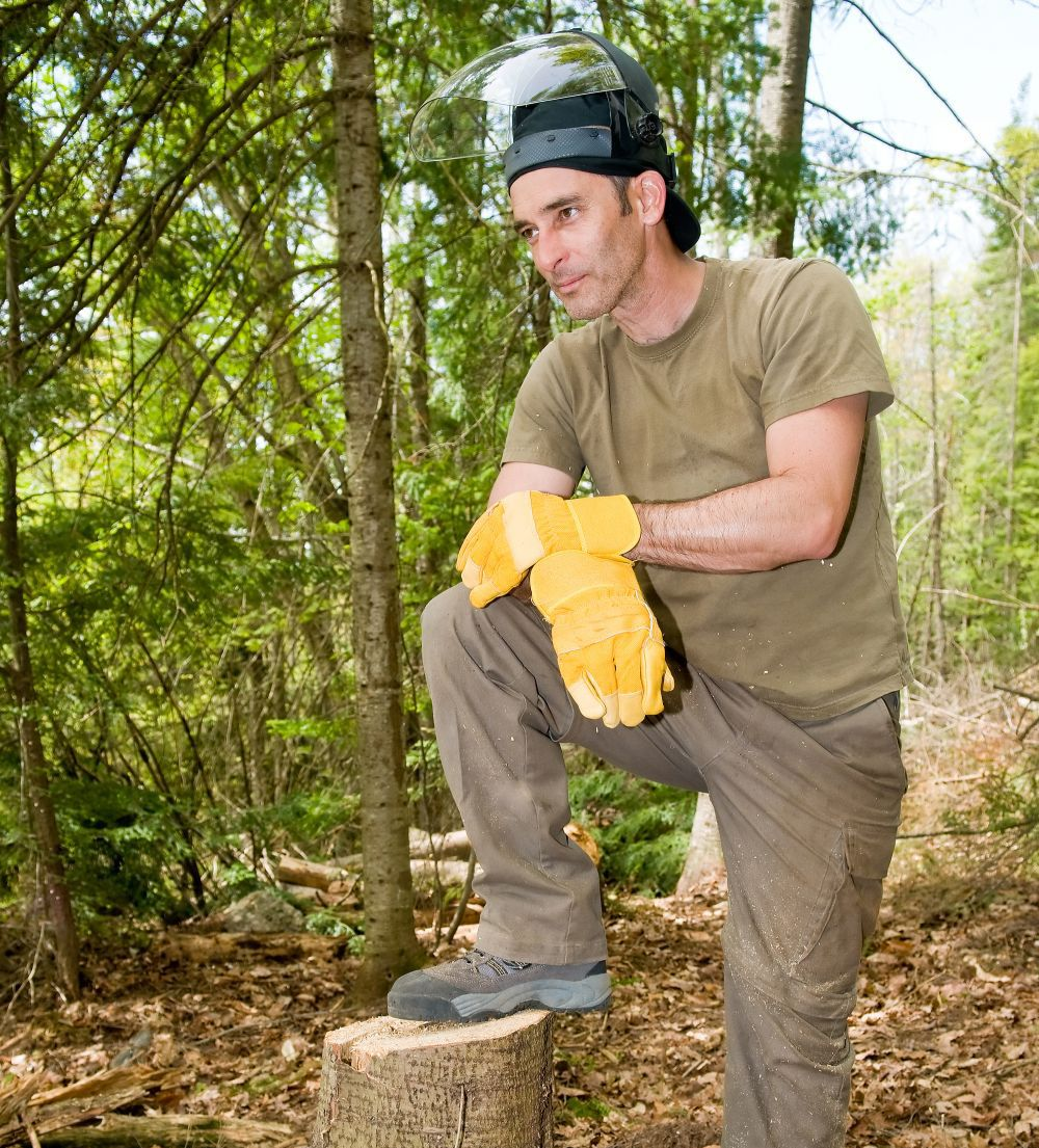 Macon-Milledgeville-GA-stump-grinding