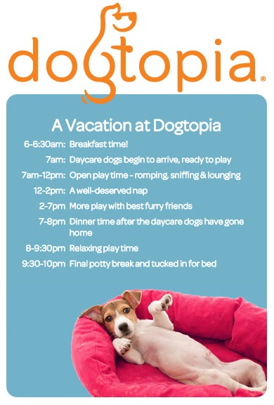 Going on vacation send your pup to dogtopia for overnight boarding to schedule an appointment at dogtopia of omaha or to learn more about their pet care services please call 402 502 4797 or visit them online solutioingenieria Images