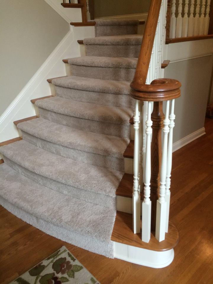 Stain Resistant Amp Waterproof Pet Friendly Carpet Options