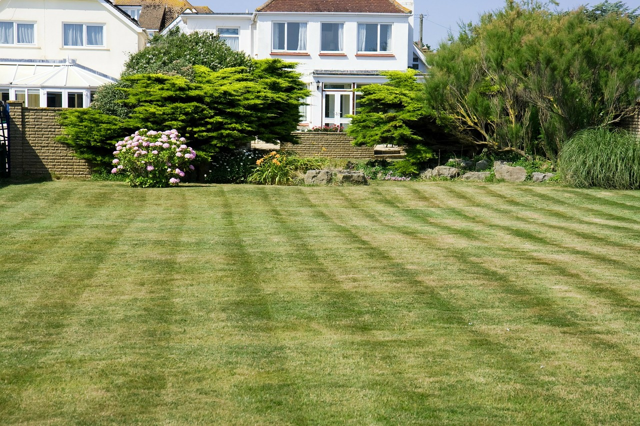 Spring lawn care tips from anchorage 39 s best lawn for Best garden maintenance