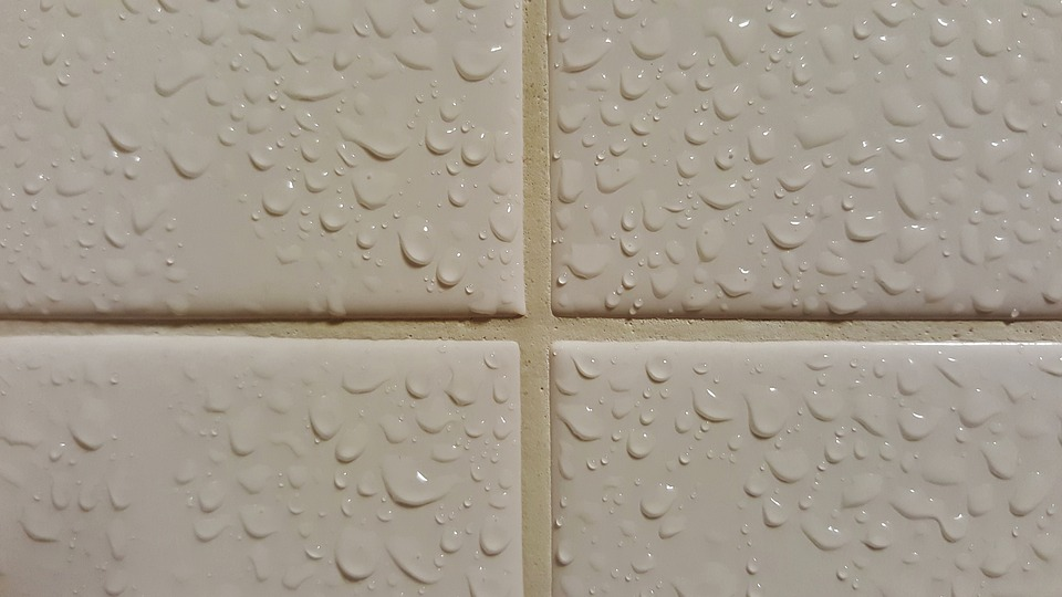 Image Result For Clean Shower Tile Grout Mildew