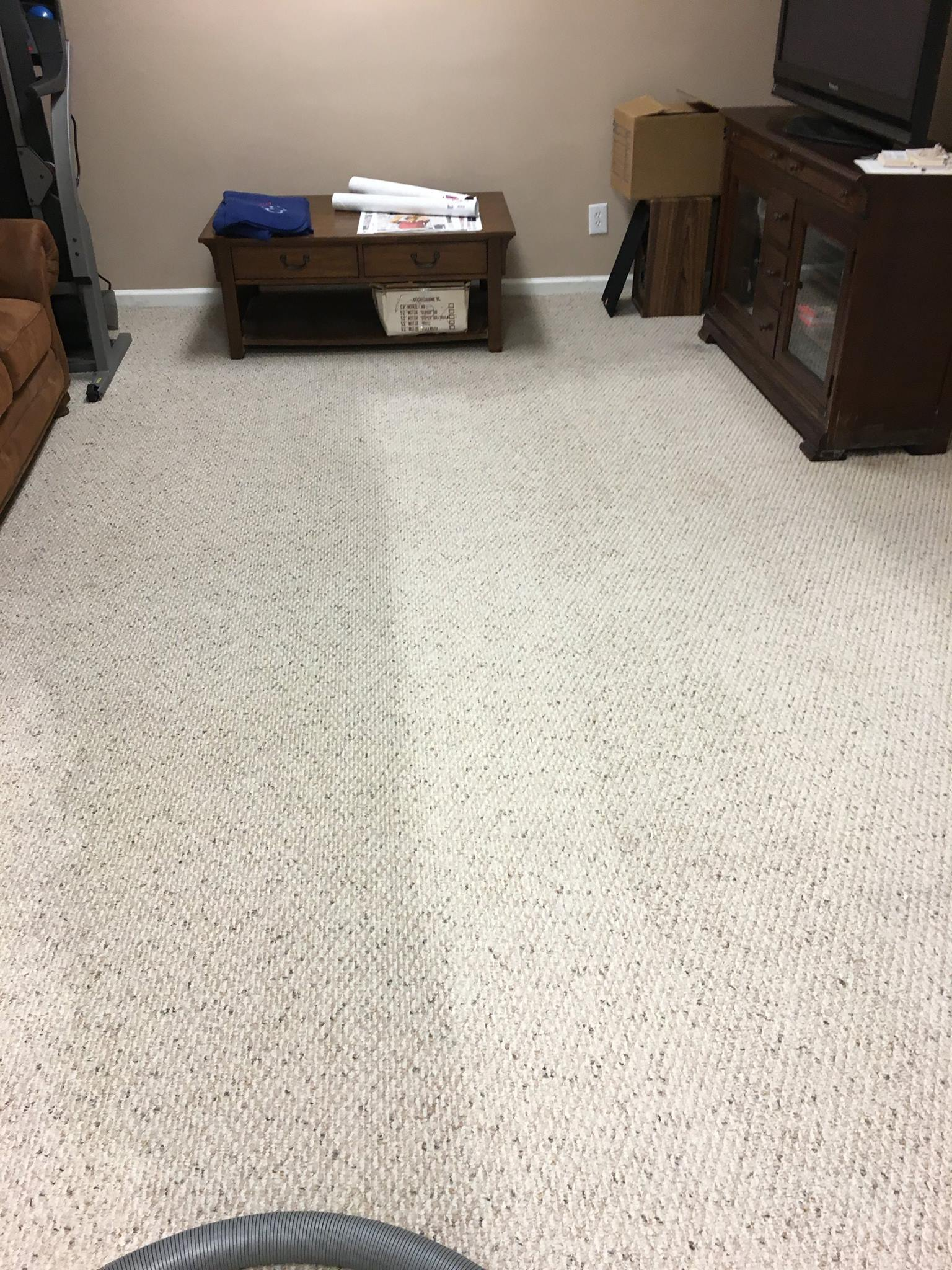 Pro Carpet Cleaner Tips for Pet Deodorization - Carpet Services Unlimited - Sharpsville   NearSay