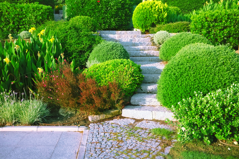 Commercial landscaping Hamilton OH