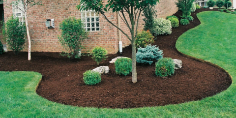 Mulching: One Of The Best Things You Can Do For Your Garden ...