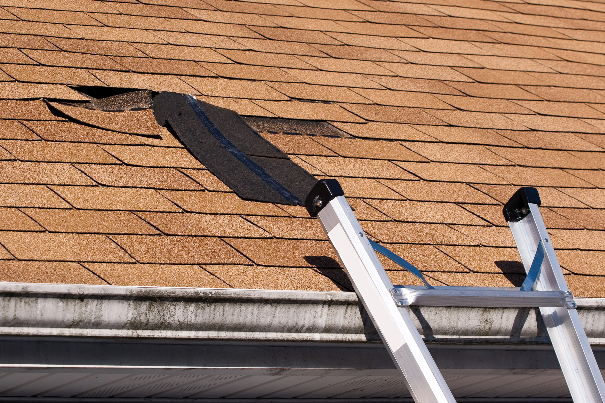 Attractive Local Roofing Company