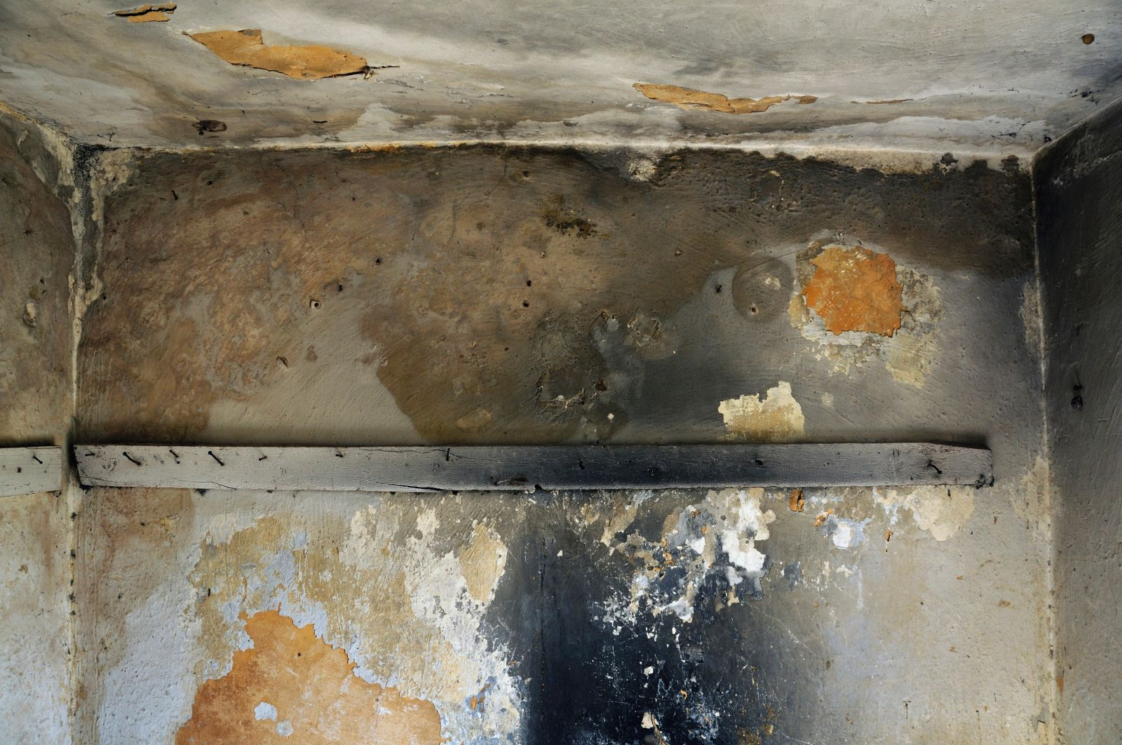 montana 39 s top mold removal company warns about 3 causes of black mold big mountain insulators. Black Bedroom Furniture Sets. Home Design Ideas