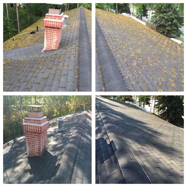 Save Your Shingles With Roof Moss Removal In Anchorage