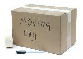 best moving company Pearl City