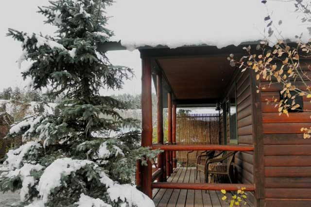 Looking for pet friendly accommodations in colorado 5 for Fireside cabins pagosa