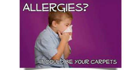 Allergies Getting The Better Of You Take Advantage Of