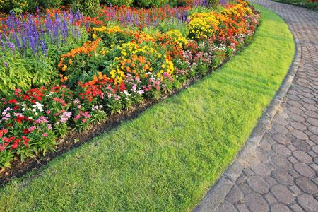 Master your garden with weeding tips from creative surroundings creative surroundings inc - Weeding garden make work easier ...