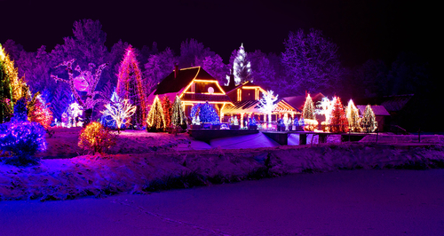 to get your winter landscape design done right with christmas lights all around your home call anointed landscaping at 817 349 3500 or go to their