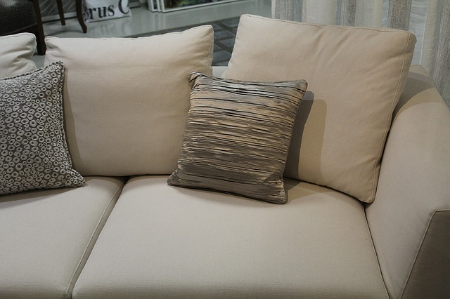 Rochester NY Upholstery Cleaning