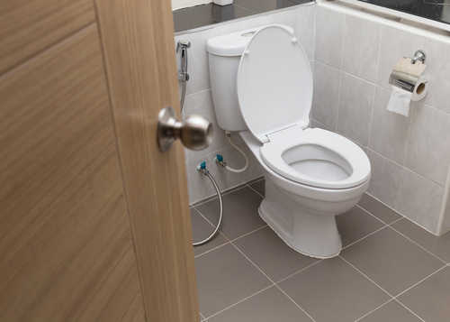 Toilet Septic Tank Cleaning : Key septic tank maintenance tips diamond snake