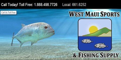 Whale watching season west maui sporting goods store for Maui fishing store